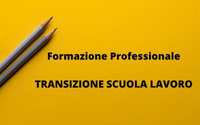 Transizione Scuola – Lavoro